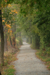 The Fog at the End of the Tunnel  [Explored] (acadia_breeze4130) Tags: harrisburg pennsylvania wildwoodpark nature autumn october path towpath leaves colors fog mist canon 7d landscape karencarlson explored