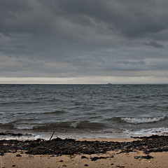 Bass Rock (-j-o-s-e-) Tags: england sky seascape seaweed beach clouds square grey sand fife ominous shore firthofforth bassrock stmonans