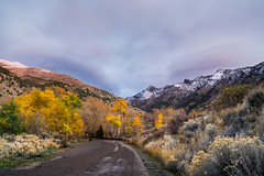 Ruby Mountains (Rustic Lens Photography) Tags: road street travel pink blue autumn trees sky white snow mountains west color green fall tourism nature beautiful leaves yellow clouds america forest season landscape woods desert grove united nevada hill rocky national western summit states ruby peaks aspen hillside forested