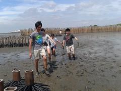 10.12.2015-AngloSingapore-BangPu-100 trees (16) (pattfoundation2014) Tags: thailand education mangrove treeplanting bangpu pattfoundation anglosingapore
