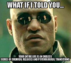 Matrix Mffforpheus (dylan.unknown5150) Tags: matrix you meme illusion if what trippy told chemical transitions perceptions dmt psychological dopamine releases serotonin i