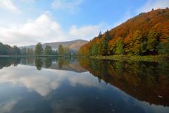 Reflets d'automne sur l'tang (Excalibur67) Tags: autumn automne landscape nikon sigma alsace paysage reflexion reflets eaux tangs d7100 vosgesdunord ex1020f456dchsm