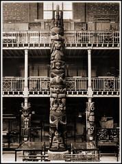 Museum Adventures Part 1 (Diz 2014) Tags: museum pitt haida diz pittriversmuseum pittriversmuseumoxford mikepeckett
