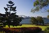 Red Flowers 1 (phillipdumoulin) Tags: flowers trees red plants gardens sydney australia growth nsw operahouse harbourbridge sydneyharbour cultivation sydneybotanicalgardens redflowers