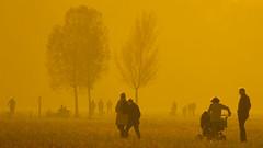 Golden Autumn (ToDoe) Tags: autumn people orange golden stroller walk herbst stroll kinderwagen contrejour pram goldenautumn pushchair gegenlicht spaziergang babystroller spaziergänger gülden konturen goldenerherbst