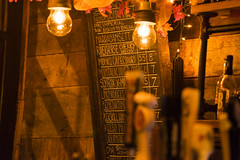 Too many choices (si_glogiewicz) Tags: lighting new york city autumn winter beer sign brooklyn bar menu chalk cozy warm soft mood drink seasonal drinking cider retro drinks alcohol inside lamps choice chalkboard edison alcohoilc