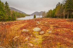 Late Autumn Morning at Jordan Pond (Carlos L. Yordan) Tags: park new travel autumn usa fall me nature clouds canon landscape rocks moody cloudy fallcolors maine foggy newengland bubbles roadtrip explore national granite traveling acadia mountdesertisland mdi 6d acadianationalpark gulfofmaine 24105mm eflens 24105mml ef24105mm canon6d findyourpark encuentratuparque