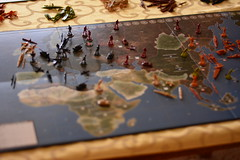 Axis & Allies 1941 (Bubash) Tags: game board cargo destroyer land ww2 strategy 1941 axisallies