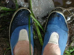 Blue and white slip-on plimsolls go for a walk (eurimcoplimsoll) Tags: wet trash vintage shoes pumps mud sneakers canvas messy muddy wrecked trashed ruined plimsolls daps gutties plimsoles