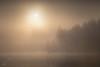 Loch Ard Dawn II (GenerationX) Tags: trees sun mist mountains water silhouette fog sunrise reflections landscape dawn scotland cross unitedkingdom scottish neil calm gb trossachs barr aberfoyle lochard canon6d laraich dondubh