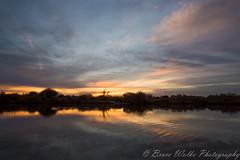 Riparian Sunrise (Arizphotodude) Tags: morning arizona lake sunrise pond lowlight nikon d750 preserve skyporn nikond750