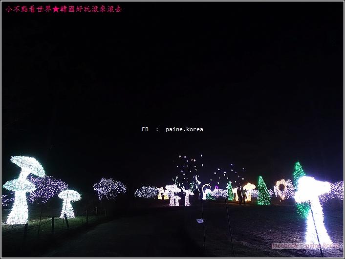 晨靜樹木園 五色星光庭園展 (27).JPG