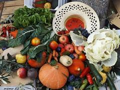 Festa dei cortili a Buccinigo d'Erba (Brianza) Italy (memo52foto) Tags: buccinigo erba brianza italy lombardy lombardia italia