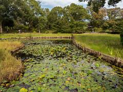 P1620067 (Rambalac) Tags: asia japan lumixgh4 pond water азия япония вода пруд