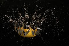 Lemon dive (BeeFour1) Tags: movement fruit splash