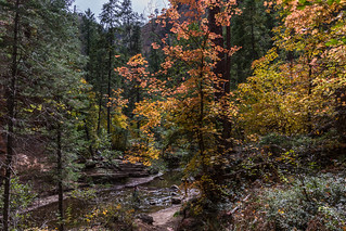 West Fork of Oak Creek Canyon No. 108