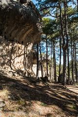 Ciudad Encantada de Cuenca (Jose Antonio Abad) Tags: castillalamancha ciudadencantada cuenca espaa josantonioabad lanscape naturaleza paisaje pblica spain geology geologa nature espaa josantonioabad pblica geologa