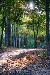 DSC06562-64_HDR (Capt Kodak) Tags: autumn chattahoocheerivernationalrecreationarea fall hdrefexpro2 madefrom3images medlockbridgepark nationalparkservice nikcollectionbygoogle niksoftware photomerge