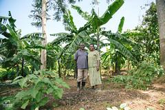 UG1605_219 (Heifer International) Tags: uganda ug