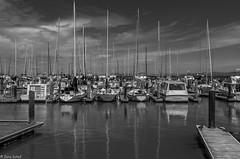 silence at Pier 39 (zora_schaf) Tags: zoraschaf unitedstates usa spiegelung blackandwhite schwarzweiss silence boote yachthafen kalifornien california sanfrancisco pier39