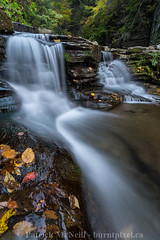Finger Lakes Set One - 5 (burntpixel.ca) Tags: photonew york newyork state united states america fingerlakes photograph rural fine art patrick mcneill burntpixel wrench777 beautiful spectacular a7r2 sony 1740mm canon landscape vertical nature fall autumn water falls waterfall travel trip wander adventure journey overseas green brown orange foliage leaves diagonal double montourfalls havanaglen