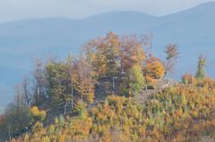 DSC_0525 (Pter_Szab) Tags: mtra matra hungary nature autumn colours mountains galyateto galyatet forest hiking nationalpark landscape