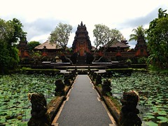 Bali (lrudzis) Tags: bali indonesia ubud kuta southeastasia travel explore international escape destination mystery island