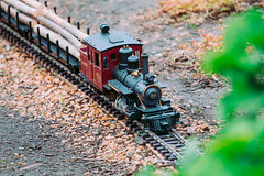 taltree. june 2015 (timp37) Tags: toy train porter indiana taltree 2015 summer june 53