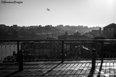 Dom Lus I Bridge - Porto (Serapic) Tags: oporto porto portugal portogallo city cityscape bridge b w bw blackandwhite bianco bianconero bianchi nero negro neri black ponte shadow shadows light lights contrast sky citt landscape bird birds fly