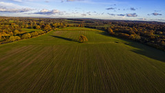 Lonely Tree (Morgan Masters photography) Tags: drone photography dronephotography dji phantom3 phantom aerial air birdseyeview above field tree autum orange glow cloud sky colors colour colorfull colourfull colur forest woodland woods wood
