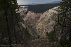 """Grand Canyon of the Yellowstone • <a style=""""font-size:0.8em;"""" href=""""http://www.flickr.com/photos/63501323@N07/30732739651/"""" target=""""_blank"""">View on Flickr</a>"""