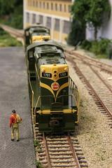 2016_11_12_Valkenveld_081 (dmq images) Tags: modelleisenbahn model railway railroad scale schaal modelspoor h0 187 layout valkenveld inglenook canadian national cn bachmann gp9 1701