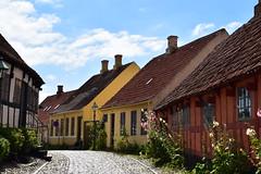 Straat vol kleuren (frans63) Tags: street straat sky lucht colors kleuren flowers bloemen huizen houses