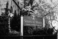 Sisters Of Mercy (Alejandro Ortiz III) Tags: 6d alejandroortiziii alex alexortiz allrightsreserved brooklyn canon canoneos copyright2016 copyright2016alejandroortiziii digital eos lightroom lightroom3 newjersey newyork newyorkcity rahway shbnggrth sistersofmercy alexortizphotogmailcom ef24105mmf4lisusm