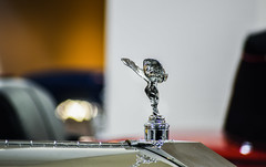 rr spirit of ecstasy (pbo31) Tags: sanfrancisco california nikon d810 color november 2016 fall boury pbo31 city pacificheights vannessavenue reflection rr silver auto car rollsroyce spirt hood shine female ecstasy