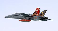 F-18 Hornet del Ala 15 (vic_206) Tags: plane avión mataro f18hornet ala15 waraircraft canoneos7d canon300f4liscanon14xii festadelcel2015