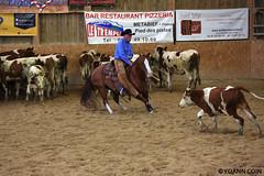 BJ1A8630 (yoann.coin) Tags: horse france western cutting ncha remoray