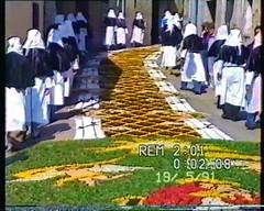 Maggio 1991