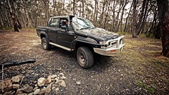 ROBBO OUT AND ABOUT Jenolan State Forest NSW Australia (smortaus) Tags: camping outdoors offroad australia 4wd wideangle nsw toyota robbo hilux 2015 inthebush australian4wd jenolanstateforest dannyhayes sonya65 2592015