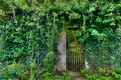 The Gate (Esther Seijmonsbergen) Tags: france green overgrown fairytale gate europe secret entrance ivy wormhole locked hdr secretive secretentrance 3xp lockedgate sprookjesachtig estherseijmonsbergen