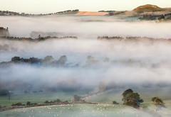 Autumal layers (Stuart Stevenson) Tags: uk autumn trees mist colour fog landscape photography scotland countryside view vista layers autumnal clydevalley stuartstevenson wwwzerogravitymeuk appicoftheweek