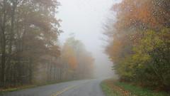 Foggy (Jackie***) Tags: autumn fallleaves mountains rain fog fallcolors pumpkins autumnleaves blueridgeparkway blowingrock autumncolor boonenc fallmums