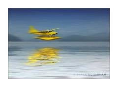 LANDING ON LOCH LOMOND (Lucky Del) Tags: uk reflection tourism water airplane scotland aeroplane lochlomond seaplane derekmonaghan