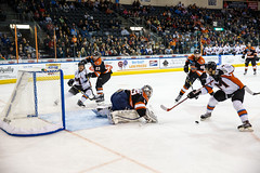 "Missouri Mavericks vs. Ft. Wayne Komets, November 12, 2016, Silverstein Eye Centers Arena, Independence, Missouri.  Photo: John Howe/ Howe Creative Photography • <a style=""font-size:0.8em;"" href=""http://www.flickr.com/photos/134016632@N02/22807410378/"" target=""_blank"">View on Flickr</a>"