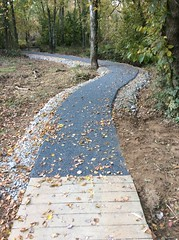 Wetland Trail - Fort Belvoir, VA
