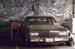 #San_Francisco #graffiti #parkinglot #Mission #District #photographs including #graffitis (Tommy Noshitsky) Tags: sanfrancisco street houses sunset blackandwhite signs hot streets bus cars bicycle architecture truck vintage buildings photography graffiti cityscape ride dirty oldschool muni baybridge embarcadero bayarea sutro hottie missiondistrict valenciastreet sffd lofts sfc dolorespark civiccenter sutrotower victorians tenderloin missionstreet polkstreet metermaid lightsigns sutratower bayareasunsets pentaxk3 baybridgedowntown sanfranciscosunsetshipsters