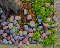 An Array of Stones (Grant Groberg) Tags: sanfrancisco street abstract rock stone arrange