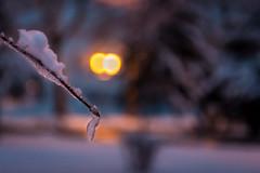 Hladna noć