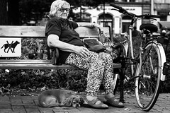 Dogs Prohibited (parenthesedemparenthese@yahoo.com) Tags: dem bw bench bike blackwandwhite dog femme monochrome nb noiretblanc portrait streetphotgraphy woman banc budapest byn canoneos600d chiens contactvisuel ef50mmf18ii eyescontacts streetphotographie velo