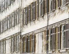 Ach, ich habe missgehandelt (amras_de) Tags: zeichnung dibuix kresba tegning drawing desegnajo dibujo piirustus dessin crte rajz teikning disegno adumbratio zimejums tekening tegnekunst rysunek desenho desen risba teckning izim fenster venster finestra okno vindue window fenestro ventana aken leiho ikkuna fentre fuinneog prozor ablak gluggi fnster langas logs vindauge vindu fenstra janela fereastra windae fnster pencere